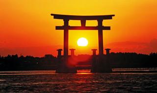 запрет япония насилие дзюдо