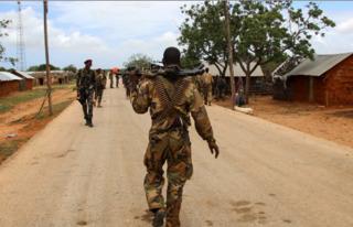 повстанец захват цар африка бамбари